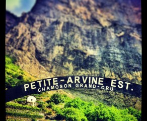 The Swiss Rhone Valley & its Wines