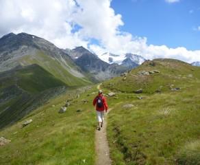 Summer Hiking & Foraging